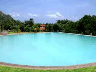 indien-hermitage-hotiel-swimming-pool.jpg