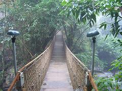 vythiri-resort-wood-bridge.jpg