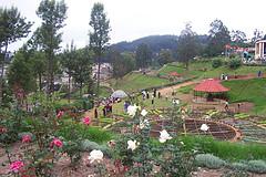ooty-botanical-garden.jpg
