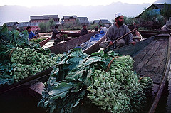 srinagar-floating-dal-market.jpg